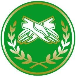 FRAFEM – Logomarca (2021)